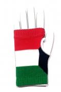 National Flag Designer Gloves