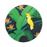 Coasters Monteverde