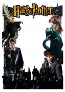 Harry Potter Frame X-Large Size
